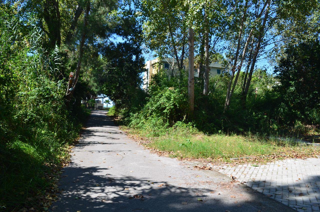 12 Rruga e Vilave, Blloku Area, Durres 2001