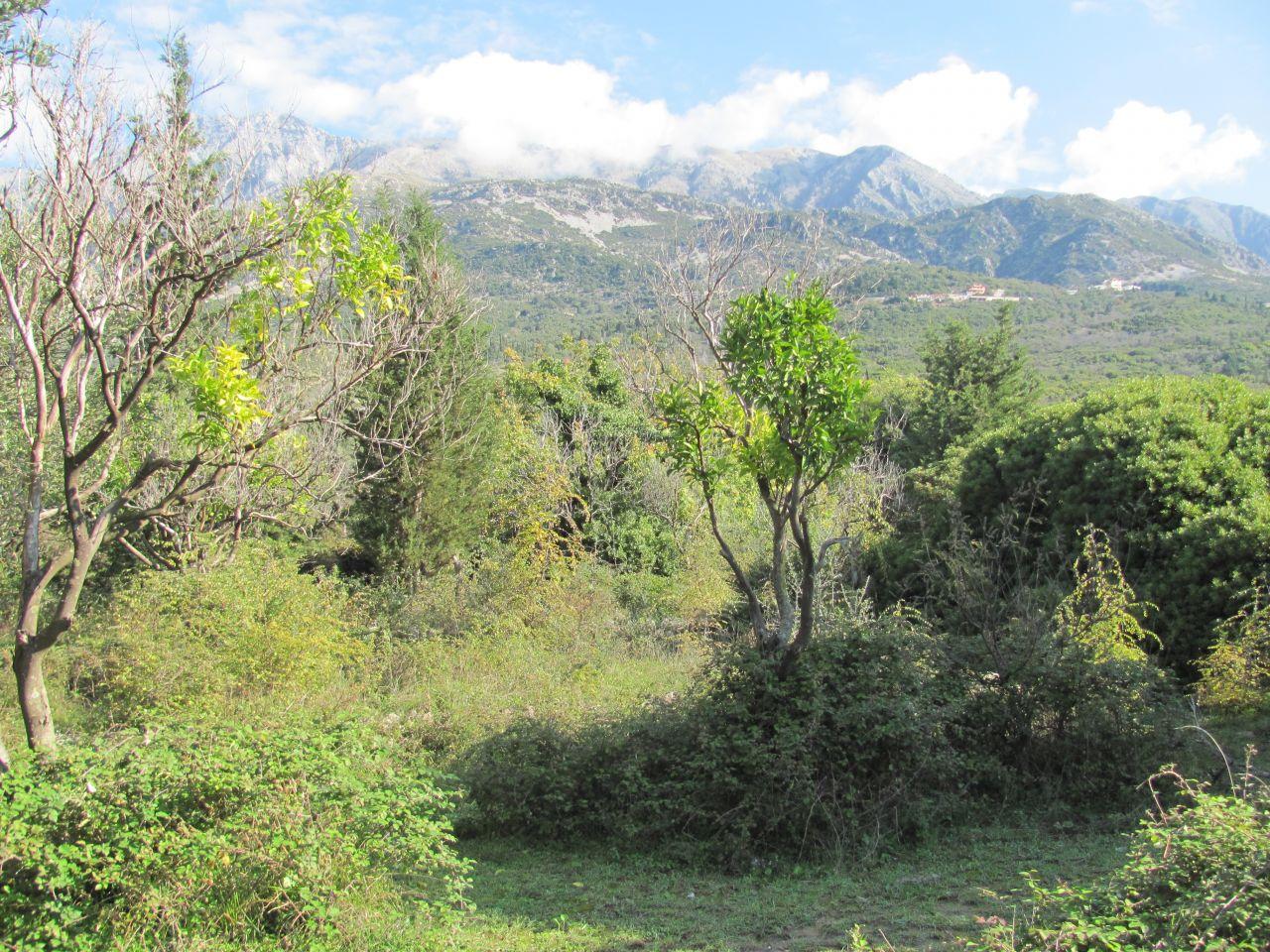 Land for sale in Dhermi, a beautiful coastal village in Albania.