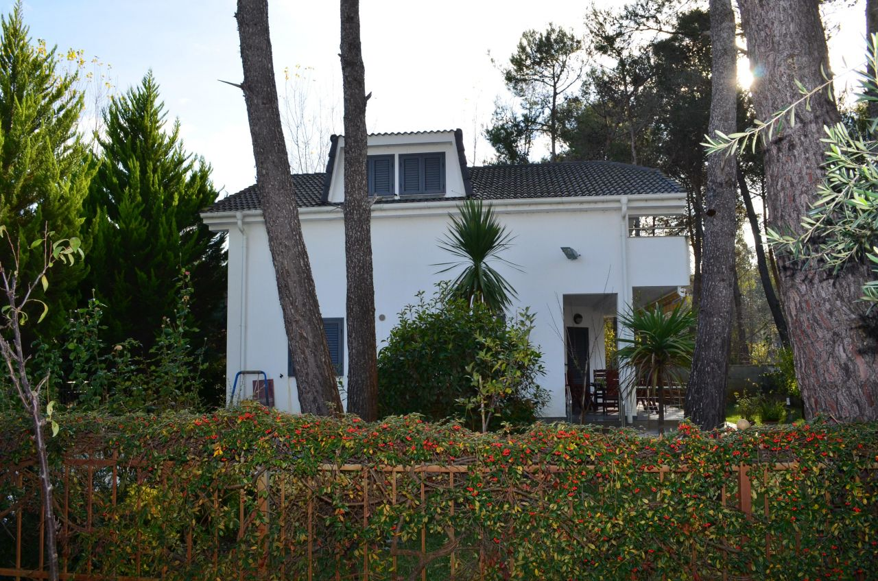 Villa rental for summer holidays in Durres Albania
