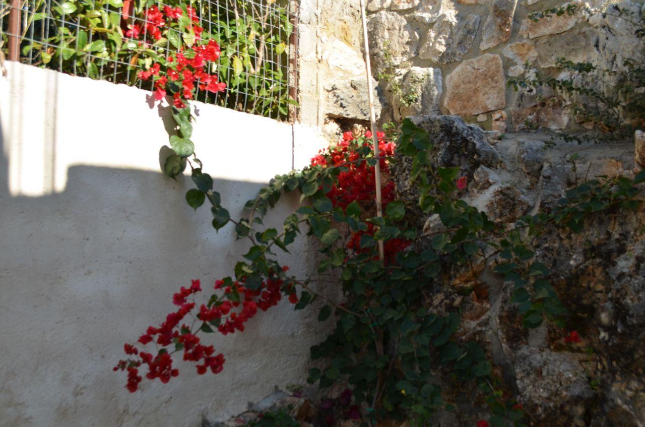 Studio Apartment in Ksamil. Vacation Apartment Ksamil