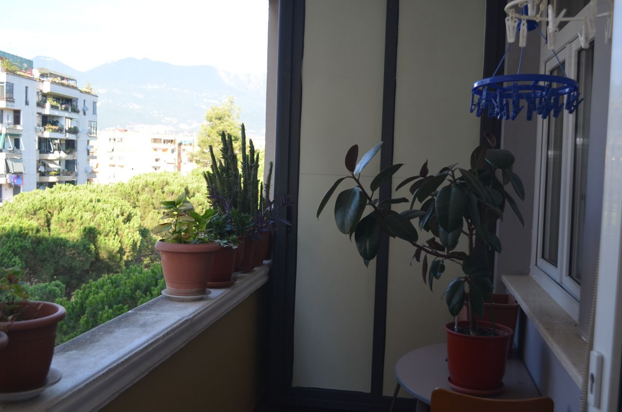 rent apartment in a very good area of tirana